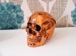 vamp skull 2