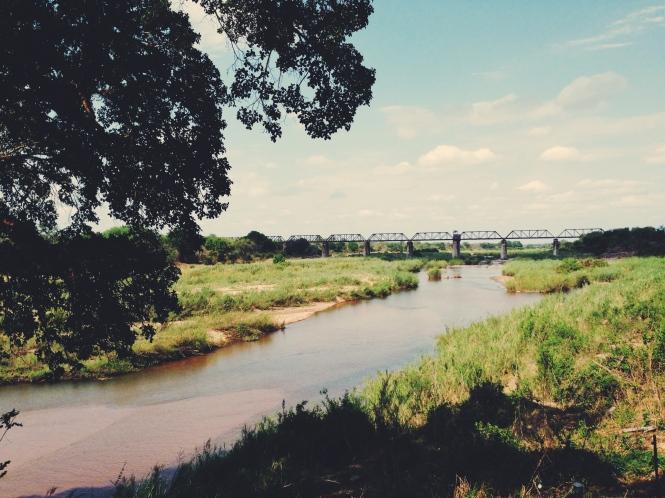 Near Skukuza