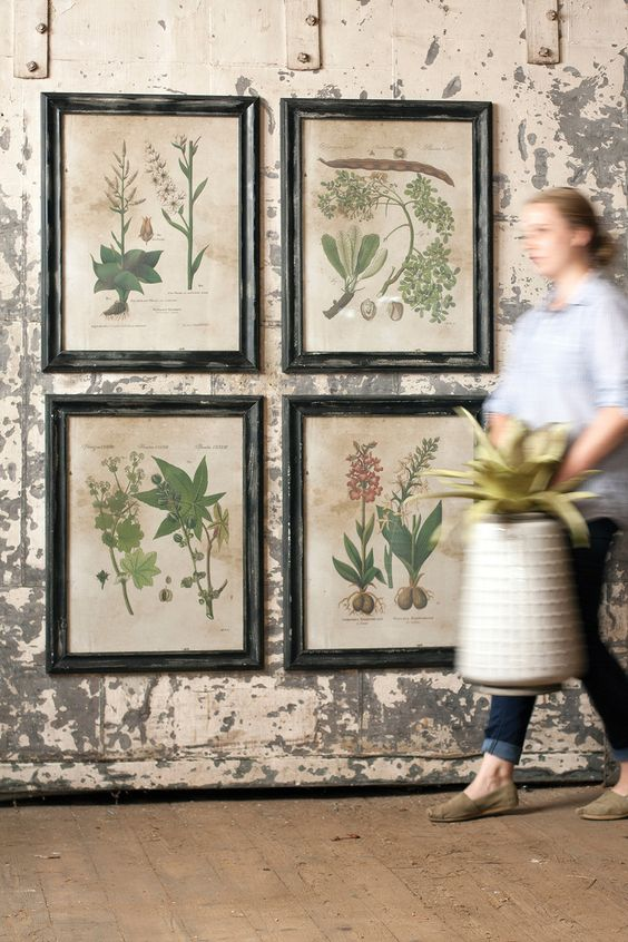 Botanical prints, interior decor