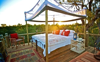 Best African Star-Beds